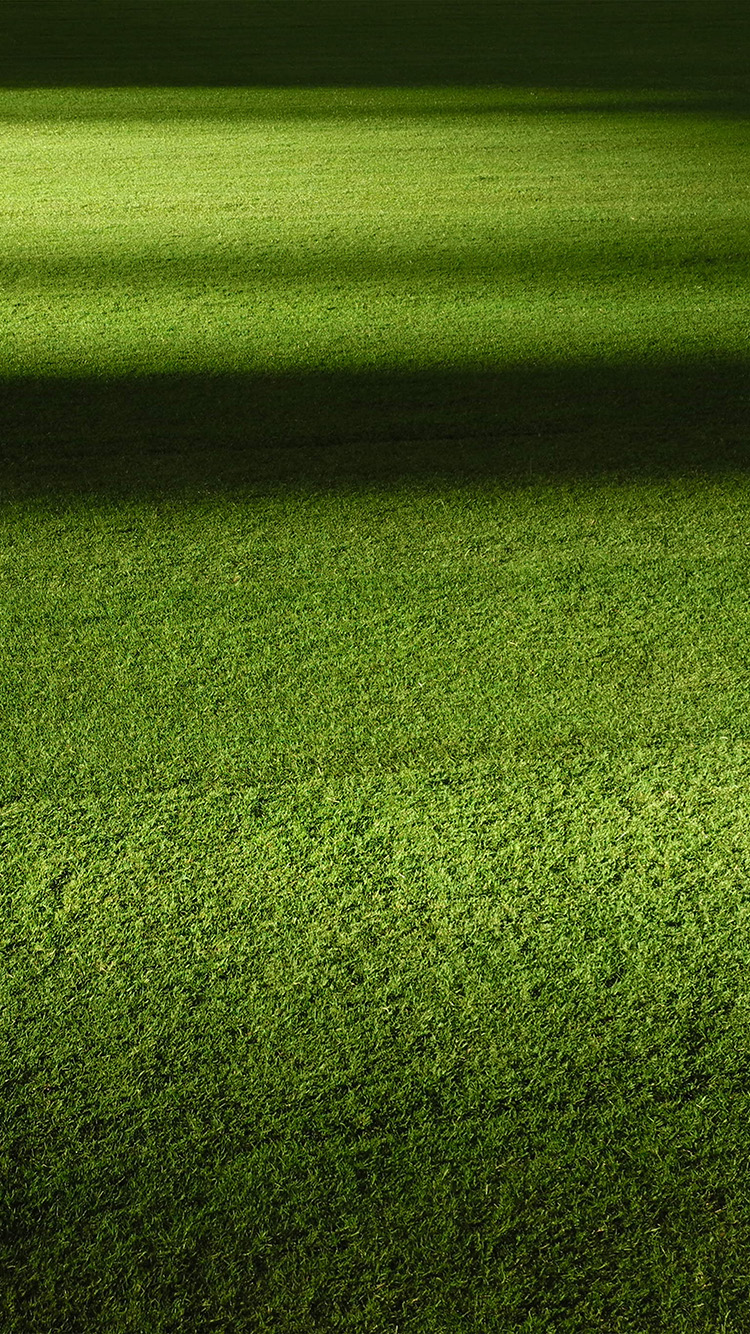 iPhonepapers.com-Apple-iPhone-wallpaper-wa59-field-green-night-grass-pattern-background