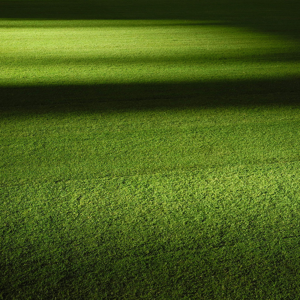 android-wallpaper-wa59-field-green-night-grass-pattern-background-wallpaper