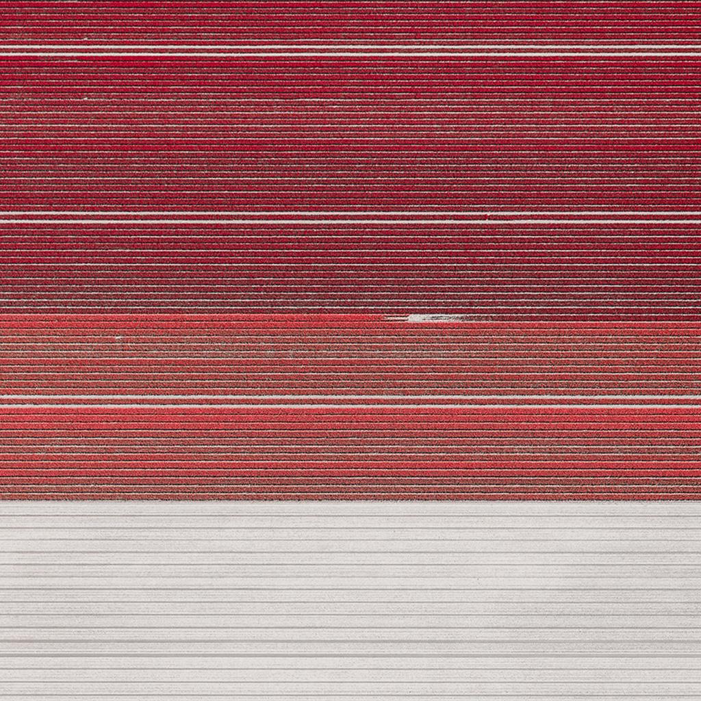 wallpaper-wd17-pattern-background-flower-red-wallpaper