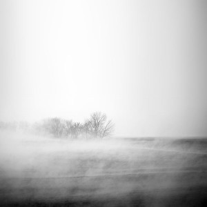 papers.co-mr13-fog-white-field-nature-1-wallpaper