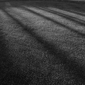 papers.co-vj87-lawn-grass-sunlight-green-dark-bw-pattern-1-wallpaper